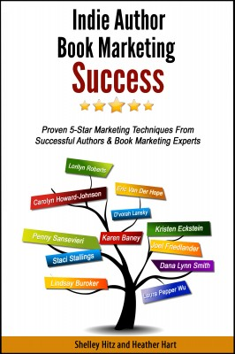 Indie Author Book Marketing Success