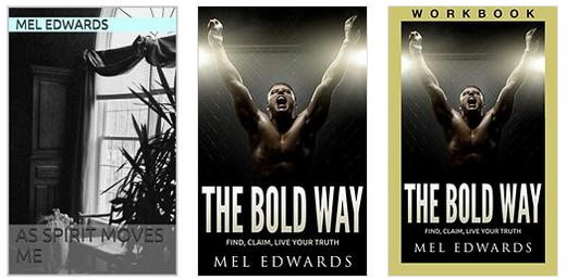 mel edwards books