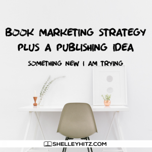 Book Marketing Strategy plus a Publishing Idea
